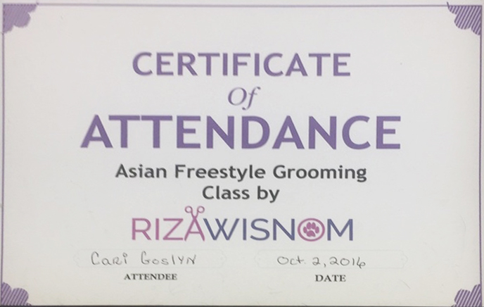Asian Freestyle Grooming, 2016