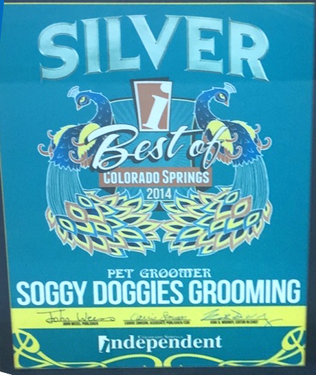 Dog Grooming Colorado Springs