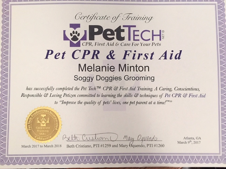 Soggy DOggies Grooming Pet Tech CPR, 2017